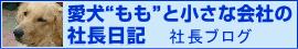 """飯田市住宅リフォーム会社社長ブログ 愛犬""""もも""""と小さな会社の社長日記"""